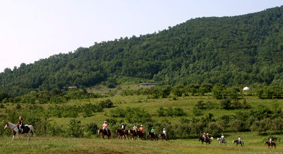 Horseback riding at Graves Mountain Lodge