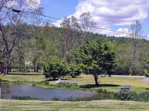 The Duck Pond - Graves Mountain