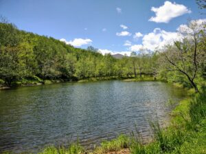Meadows Pond - Bas and Catfish, Catch and Release - at Graves Mountain