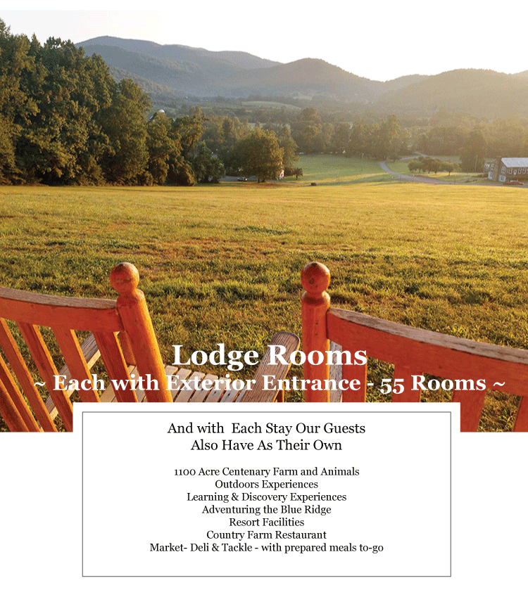 Hotel- lodge rooms next to Shenandoah National Park at Graves Mountain Farm & Lodges
