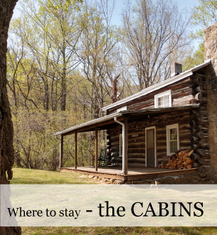 Cabins to rent in the Blue Ridge at Graves Mountain Farm on Rose River