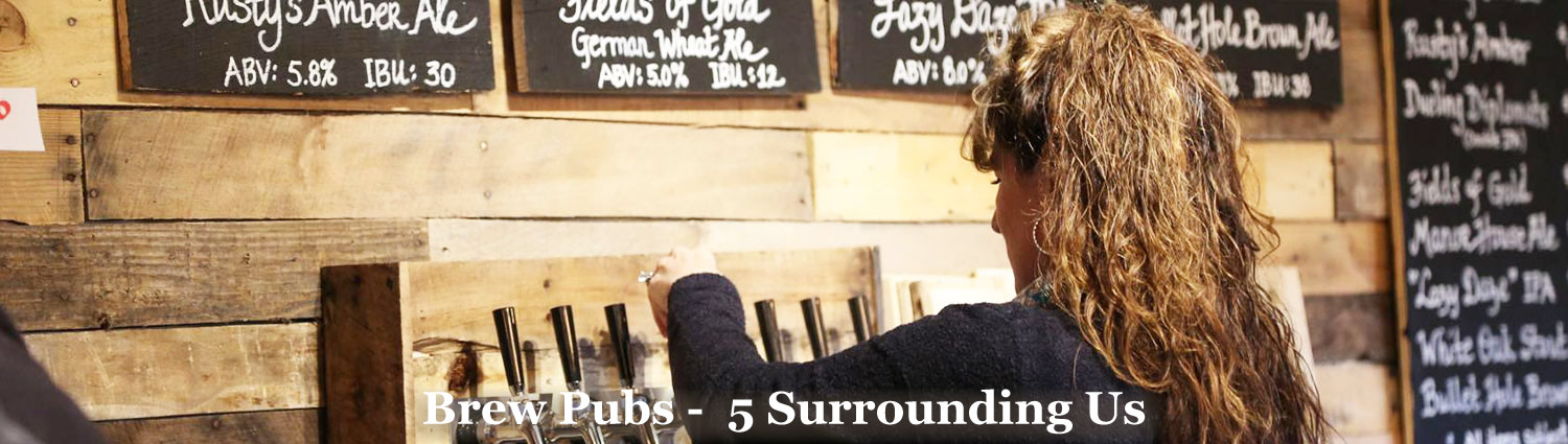 5 Brew Pubs within 30 mins drive of Graves Mountain Farm & Lodges
