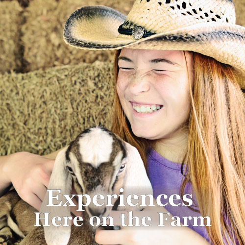 Experriences at Graves Mountain Farm & Lodges
