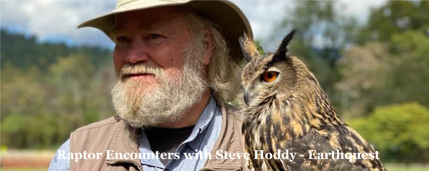 Raptor Encounters - with Steve Hoddy on Halloween sat & Sun - two shows