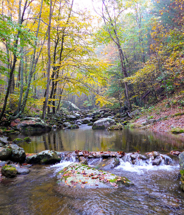 Fall Blue Ridge stream