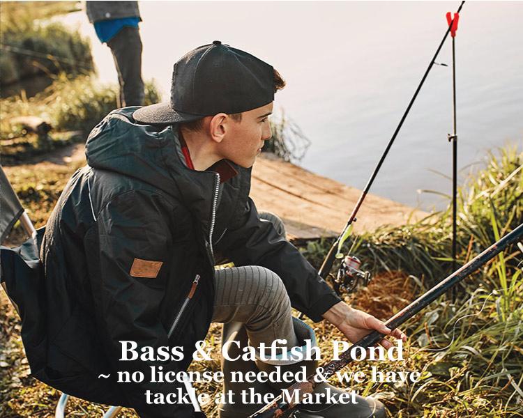 Pond fishing at Graves Mountain Farm & Lodges in VA Blue Ridge.