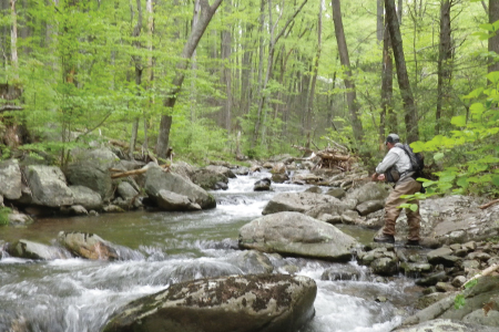 Mountain Trout Fishing at Graves Mountain Farm - on two Blue Ridge Streams