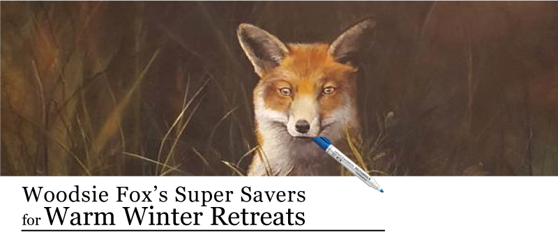 Winter retreats and meetings discount for Graves Mountain Farm & Lodges
