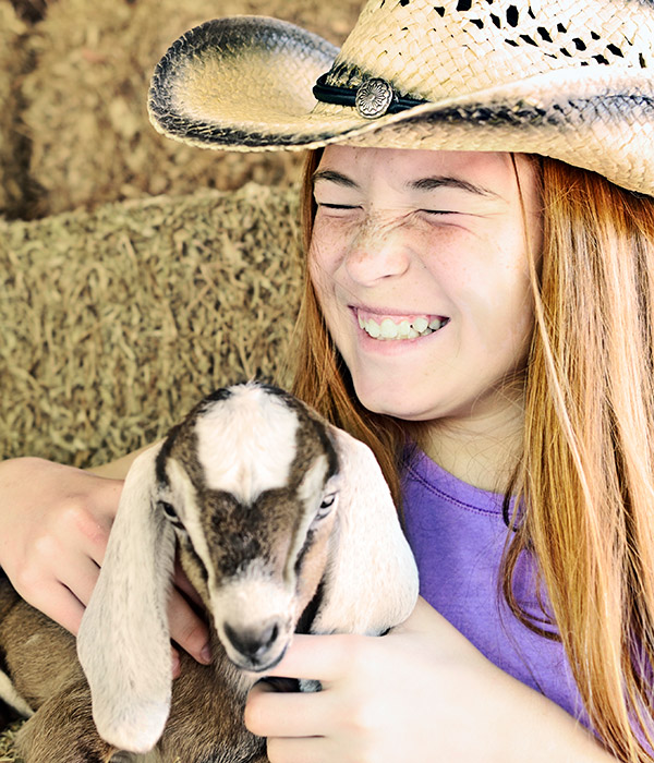 Playing with goats and pigs at Graves Mountain Farm & Lodges