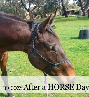 Horse Get-away weekend in the Blue Ridge