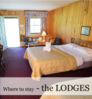Economical lodge rooms in the Blue Ridge at Graves Mountain Farm
