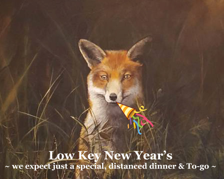 Low key searated New Year's at Graves Mountain Farm & Lodges