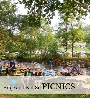 Company Picnics- Blue Ridge Farm, river, huge pool, activities, entertainments