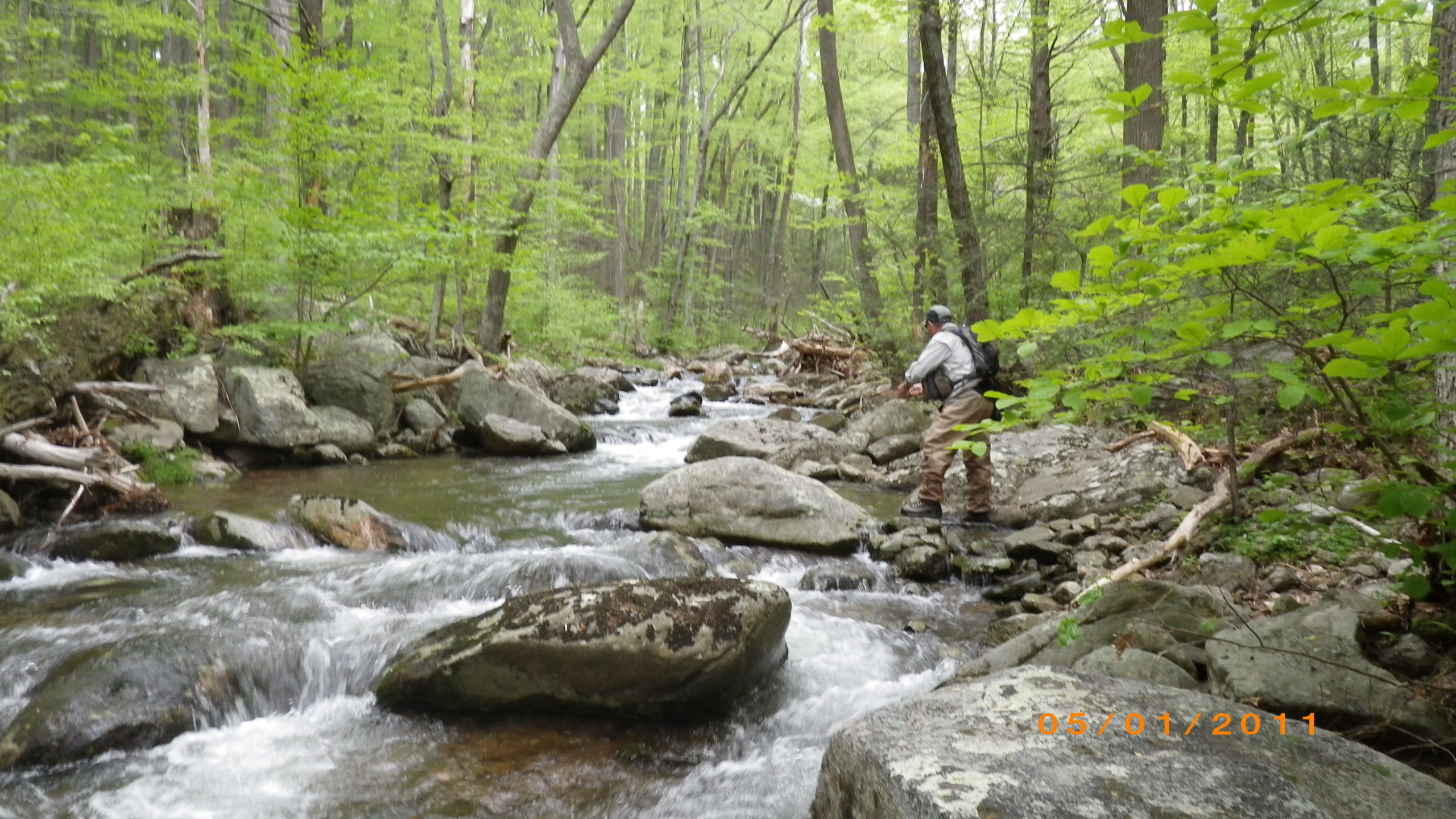 F;ly fishing on the Rose River at Graves Mountain farm in the VA Blue Ridge