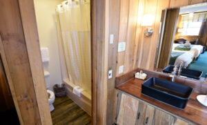 Bath and Vanity Area - Blue Ridge Lodge Room